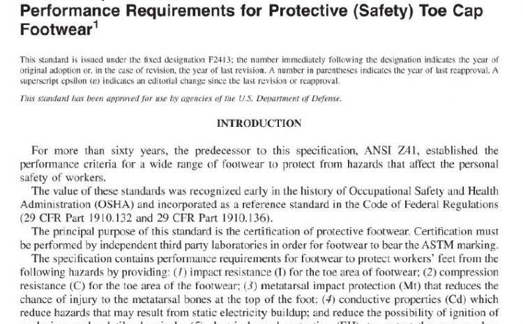 ASTM  F2413-11 pdf